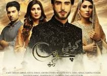 Koi Chand Rakh Episode 25