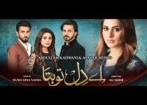 Ay Dil Tu Bata Episode 100 and 101