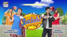 Jalebi Episode 42