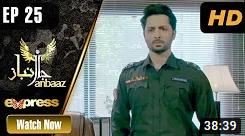 Janbaaz Episode 25