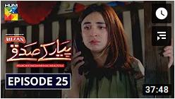 Pyar Ke Sadqay Episode 25