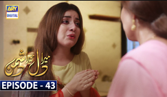 Mera Dil Mera Dushman Episode 43