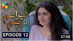 Tera Ghum Aur Hum Episode 12