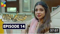 Mohabbat Tujhe Alvida Episode 14
