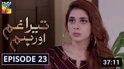 Tera Ghum Aur Hum Episode 23