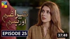 Tera Ghum Aur Hum Episode 25