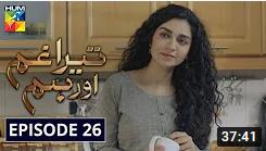Tera Ghum Aur Hum Episode 26