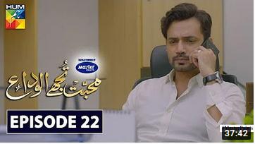Mohabbat Tujhe Alvida Episode 22