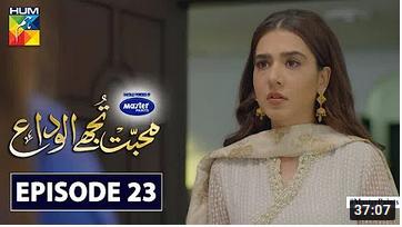 Mohabbat Tujhe Alvida Episode 23