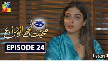 Mohabbat Tujhe Alvida Episode 24
