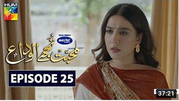 Mohabbat Tujhe Alvida Episode 25