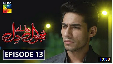 Bhool Jaa Ay Dil Episode 13