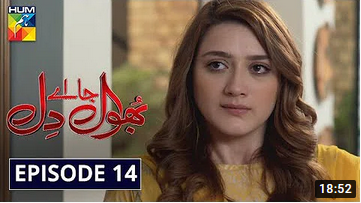 Bhool Jaa Ay Dil Episode 14