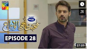 Mohabbat Tujhe Alvida Episode 28