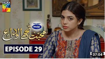 Mohabbat Tujhe Alvida Episode 29