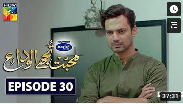 Mohabbat Tujhe Alvida Episode 30