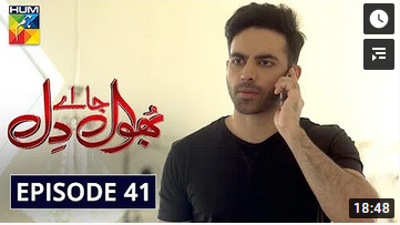 Bhool Jaa Ay Dil Episode 41