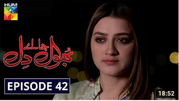 Bhool Jaa Ay Dil Episode 42
