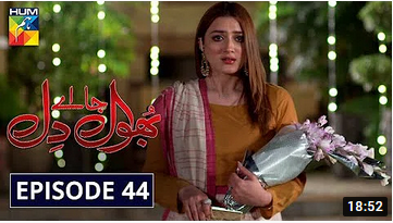 Bhool Jaa Ay Dil Episode 44