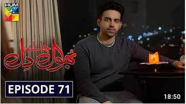 Bhool Jaa Ay Dil Episode 71