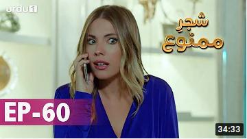 Shajar e Mamnu Episode 60