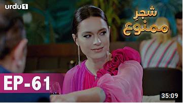 Shajar e Mamnu Episode 61