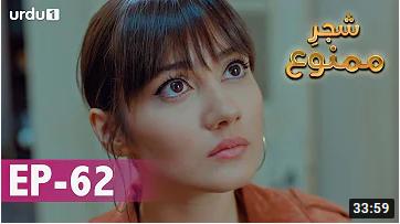 Shajar e Mamnu Episode 62